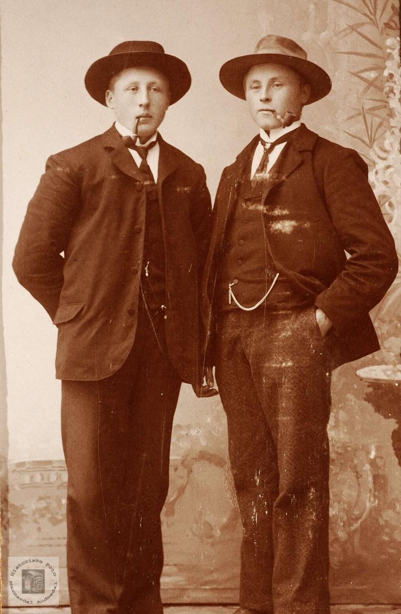 Portrett av brødrene Torstein og Ola Haaland fra Grindheim.