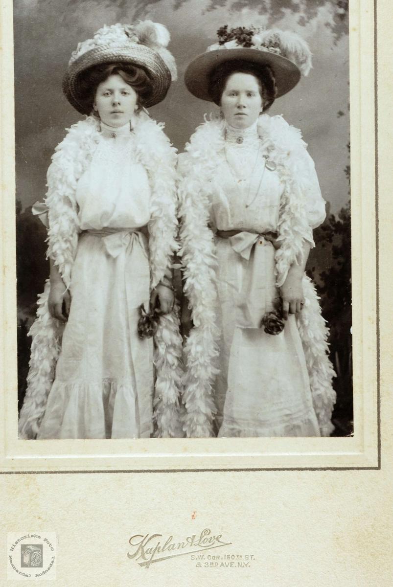 To jålete oppdolla damer i USA muligens med røtter fra Grindheim.