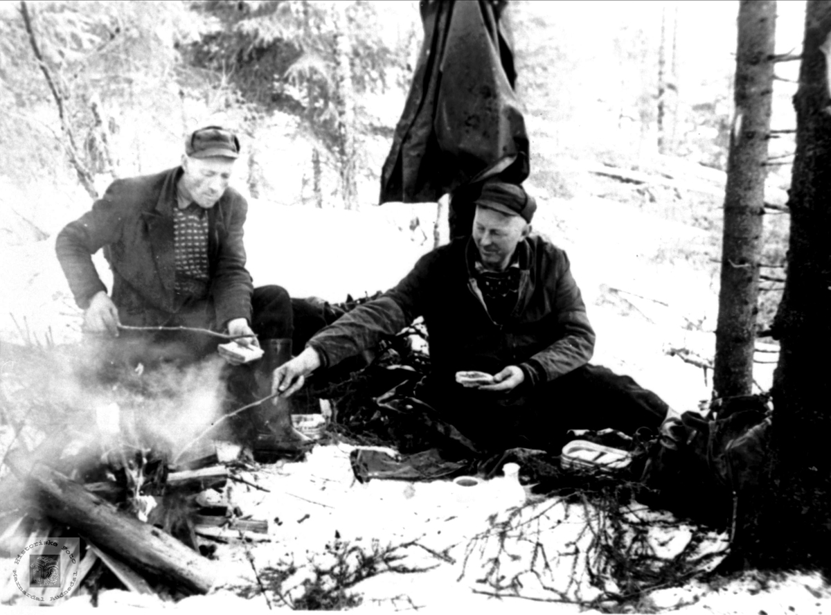 Matøkt på skogen i Bjelland.