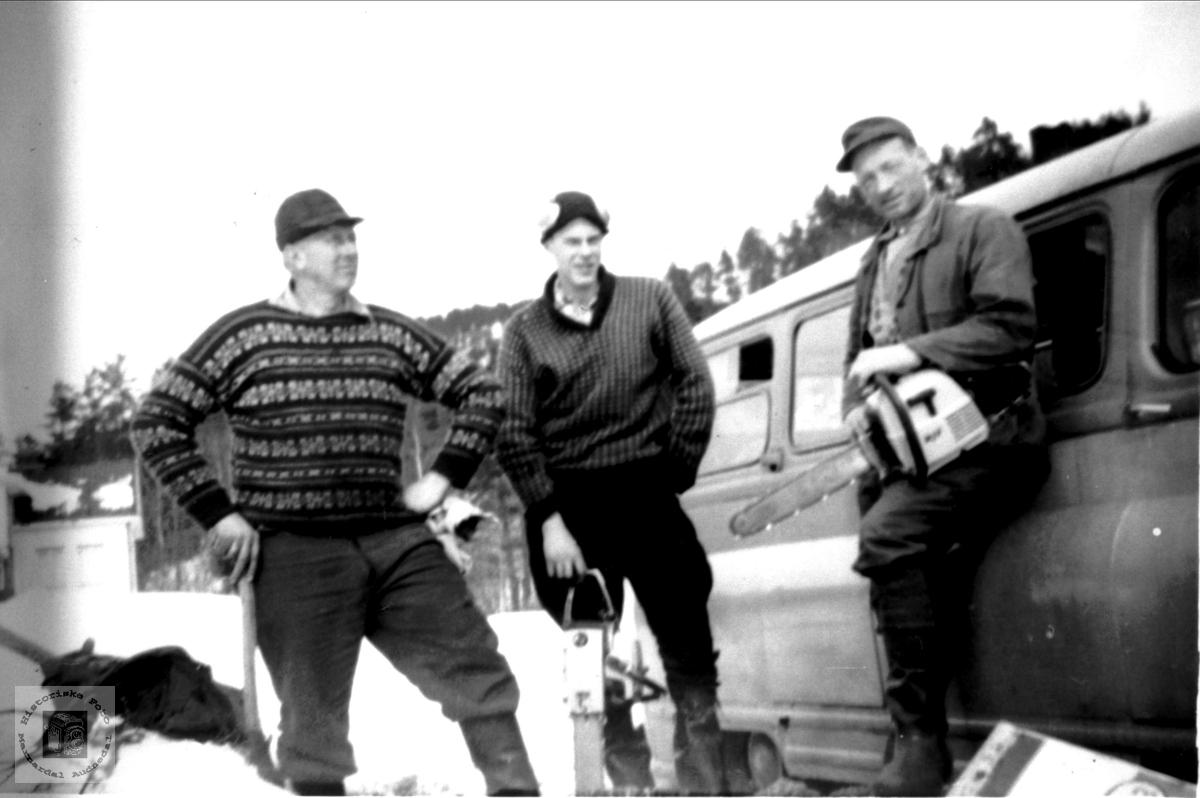 Skogsarbeidere Stedjan, Bjelland.
