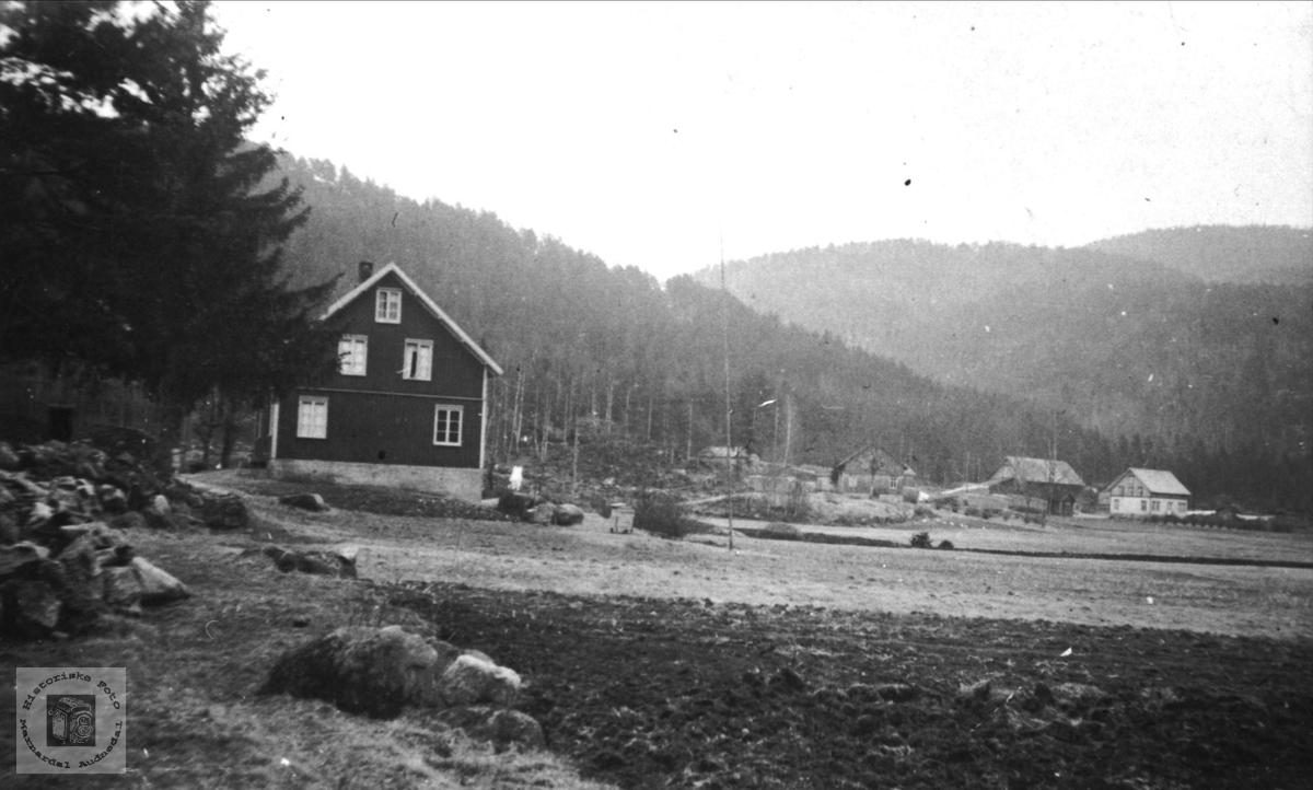 """""""Der vest"""" Stedjan, Bjelland"""