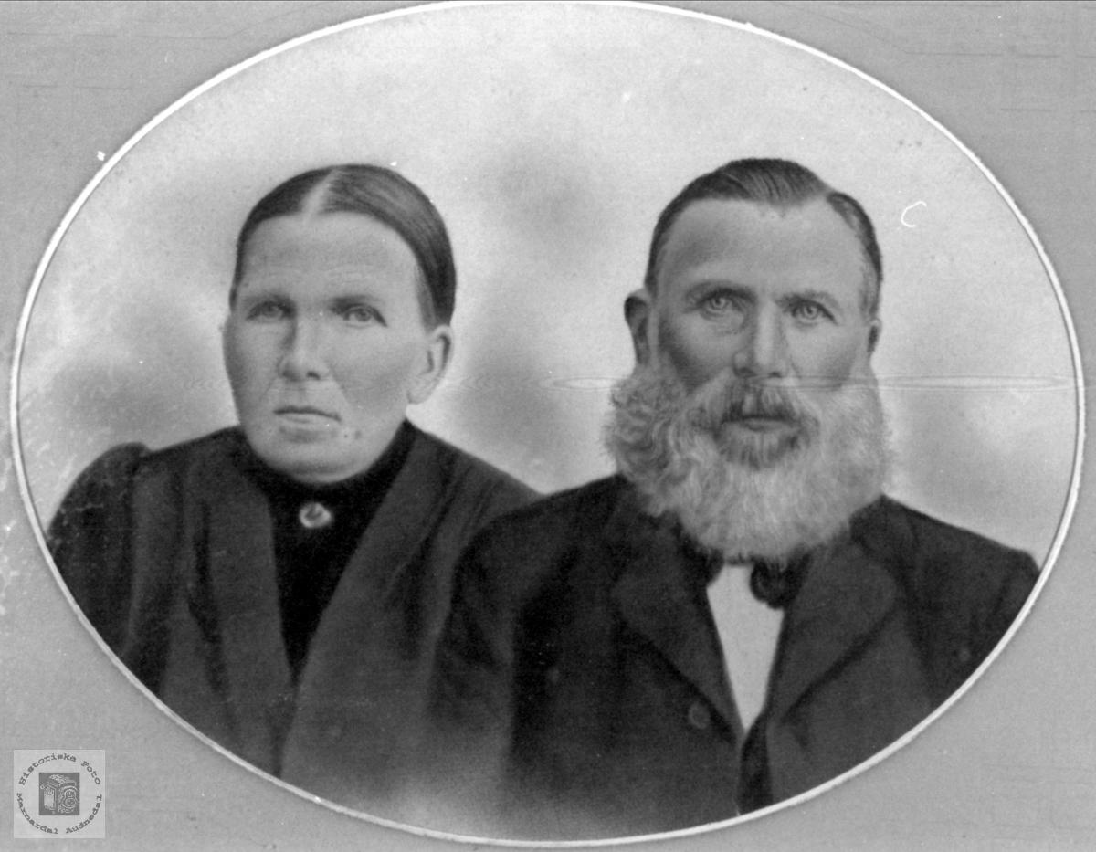 Portrett av ektepar fra Fladaasen, Øyslebø.