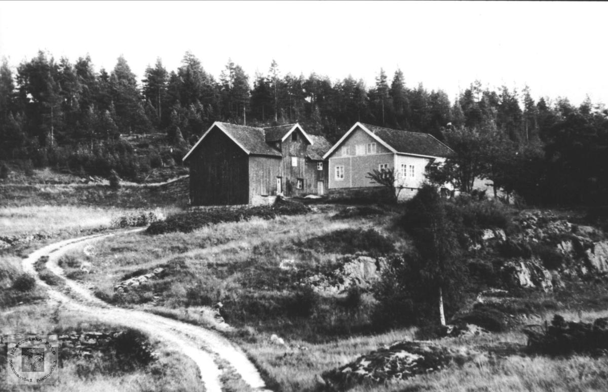 Gardsbruk. Skogen (Thorsland) i Øyslebø.