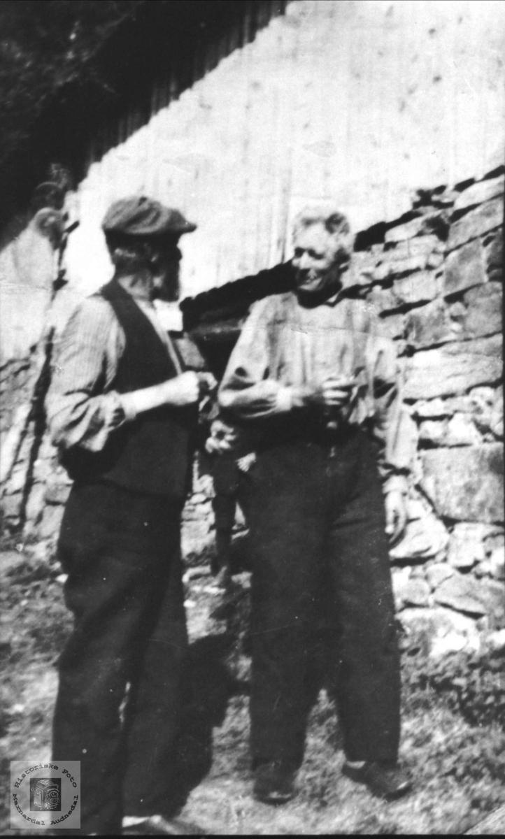 Passiar ved løeveggen. Ånen og Edvard Ramsland, Øyslebø.