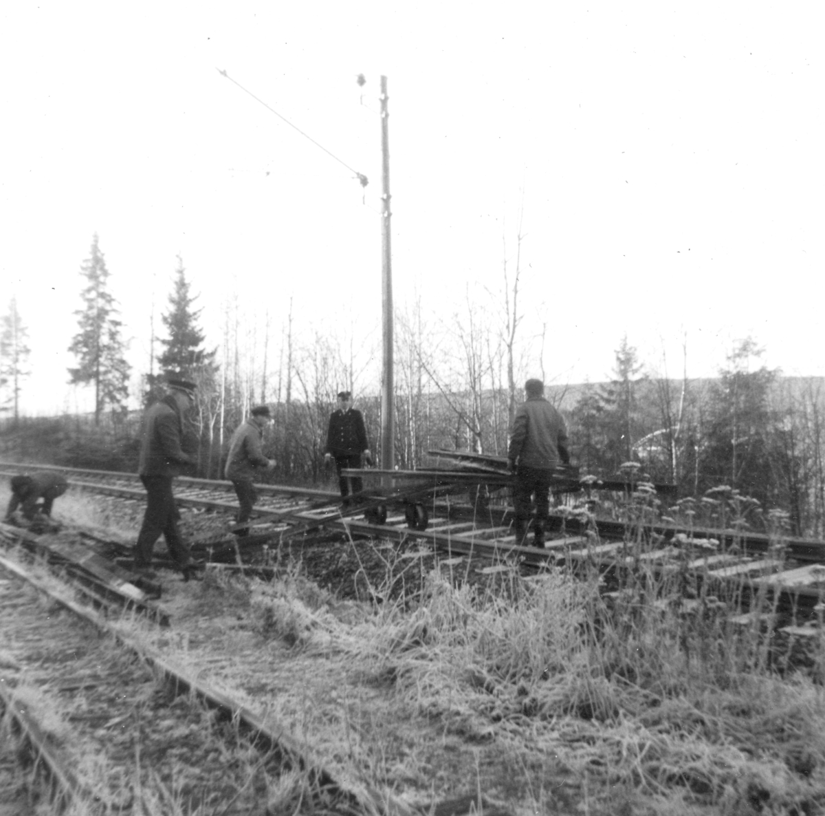 Transport av skinnemateriell på tralle på Kongsvingerbanen fra Sørumsand til Bingsfoss stasjon.