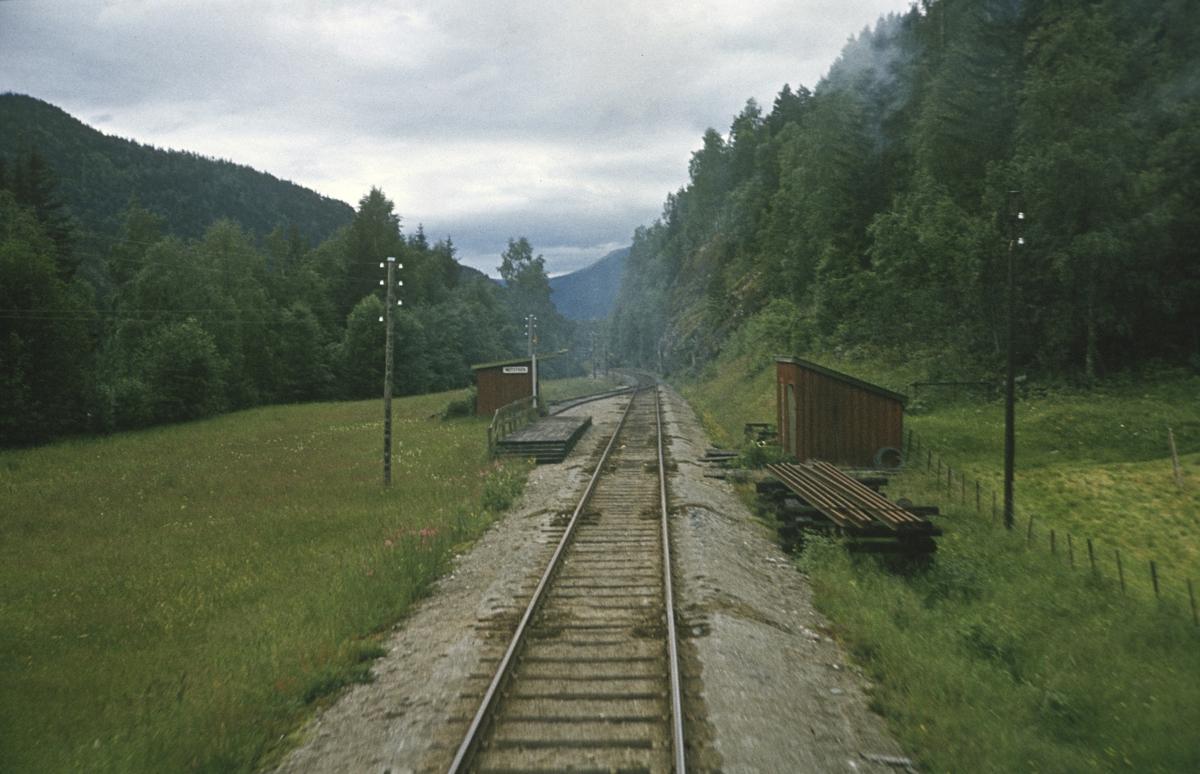 Ombord i godstog på Numedalsbanen ved Midtstigen holdeplass mellom Veggli og Rødberg.