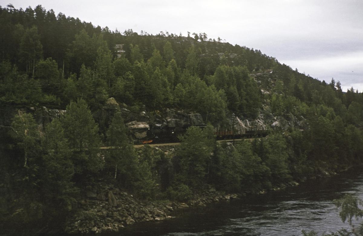 Godstog mellom Flesberg og Veggli på Numedalsbanen trukket av damplok 21b nr. 225.