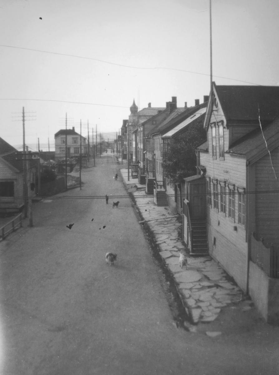 Motiv fra Havnegaten i Vadsø. Ute i gaten ser man både hunder og geiter. Et hus har en løkkuppel på taket. Fortauet er steinlagt. Det går trapper opp til inngangsdørene