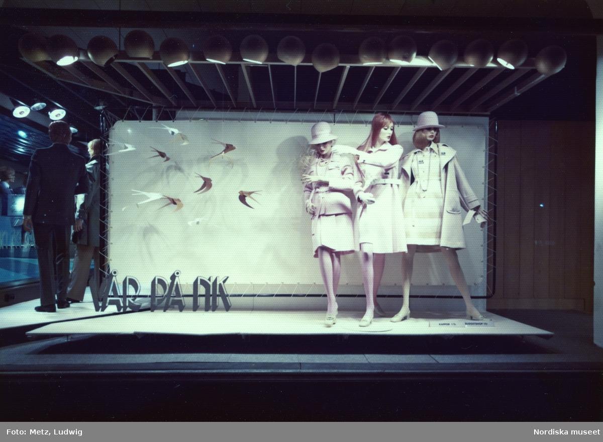 Skyltfönster på Nordiska Kompaniet. Vår på NK. Skyltdockor i puderrosa kappor och klänningar, hattar, handskar och strumbyxor. Pappersfåglar i luften.