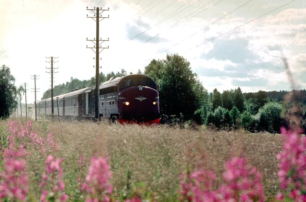 Dagtoget Oslo Ø - Trondheim over Røros, Ht 301, mellom Røstfossen og Havsjøen ved Myre. Dieselelektrisk lokomotiv Di 3 629. Os i Østerdalen.