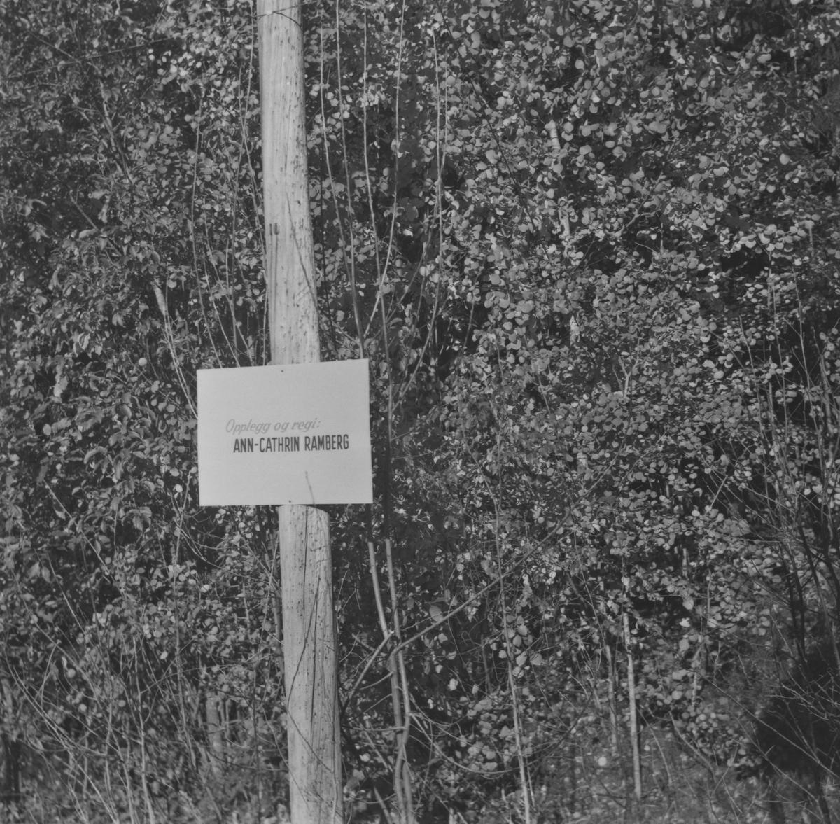 Fra en TV-produksjon som ble tatt opp i 1967. Carl Fr Thorsager var guide og plakatene som sees på stolpene var avslutning. Det ble kjørt med diesellok fra stolpe til stolpe.