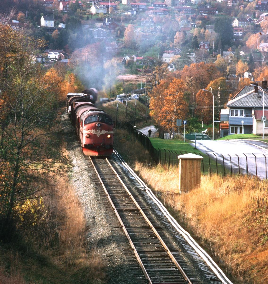 Godstog 5793 legger ut på sin 17 timer lange ferd fra Trondheim til Bodø.