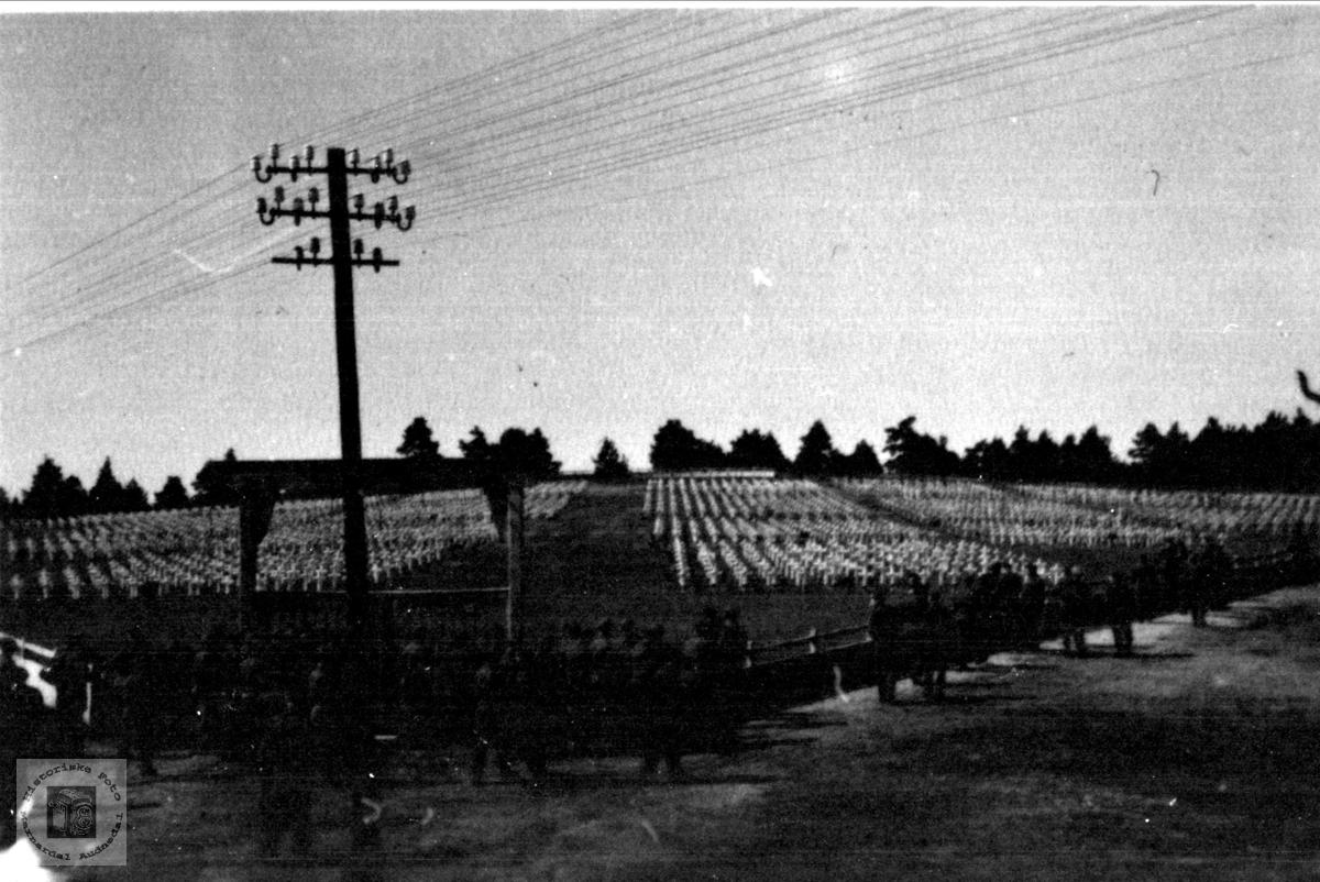 Norske soldater i brigade 491 betrakter am. krigskirkegård i Nord-Tyskland