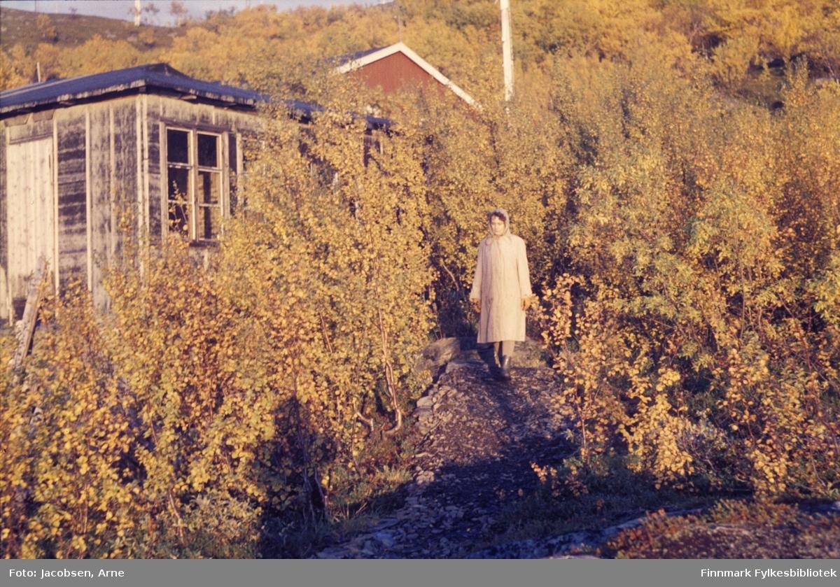 Aase Jacobsen foran hytta i Bjørkåsen, som lever opp til navnet sitt på bildet. Hytta har liggende panel, sprossevinduer og svart papp på taket. Døra er satt inn på røstveggen helt til venstre. Aase har en lys kåpe og gummistøvler på seg og er på tur ned stien fra hytta. Bak hytta ser man et møne på en bygning bak alle trærne. En el-stolpe ses ved siden av mønet. Trærne har godt med løv som er begynt å få høstfarge.
