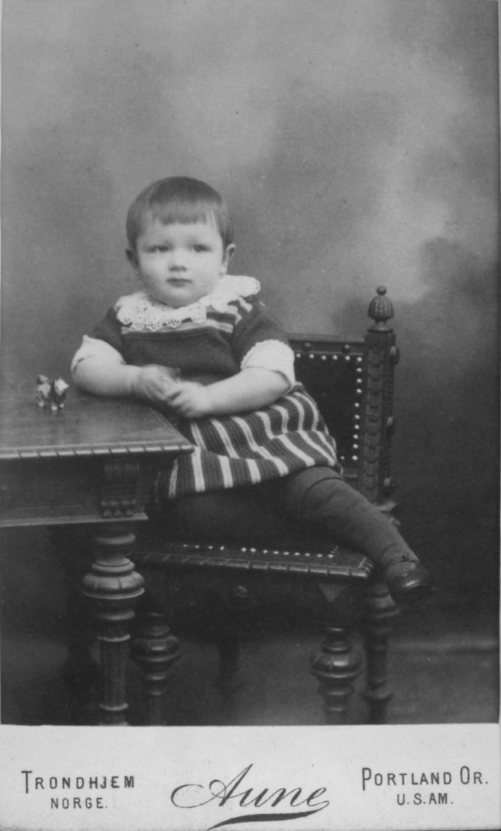 Portrett av et ukjent barn, 1-2 år gammelt