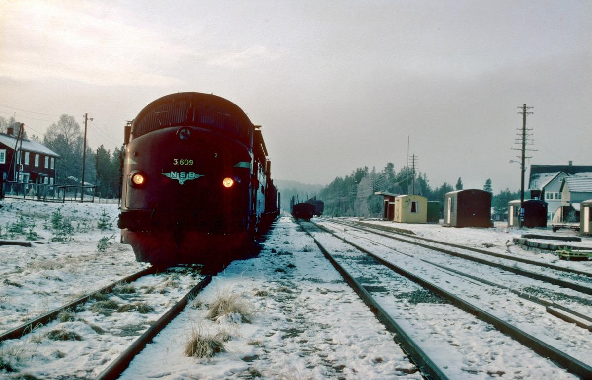 Telneset stasjon med arbeidstog for utkjøring av nye skinner. NSB dieselelektrisk lokomotiv Di 3 609. Tidligere landhandel synes til venstre i bakgrunnen. Telneset var opprettet som midlertidig stasjon pga. fornying av overbygning på strekningen Tynset - Tolga.