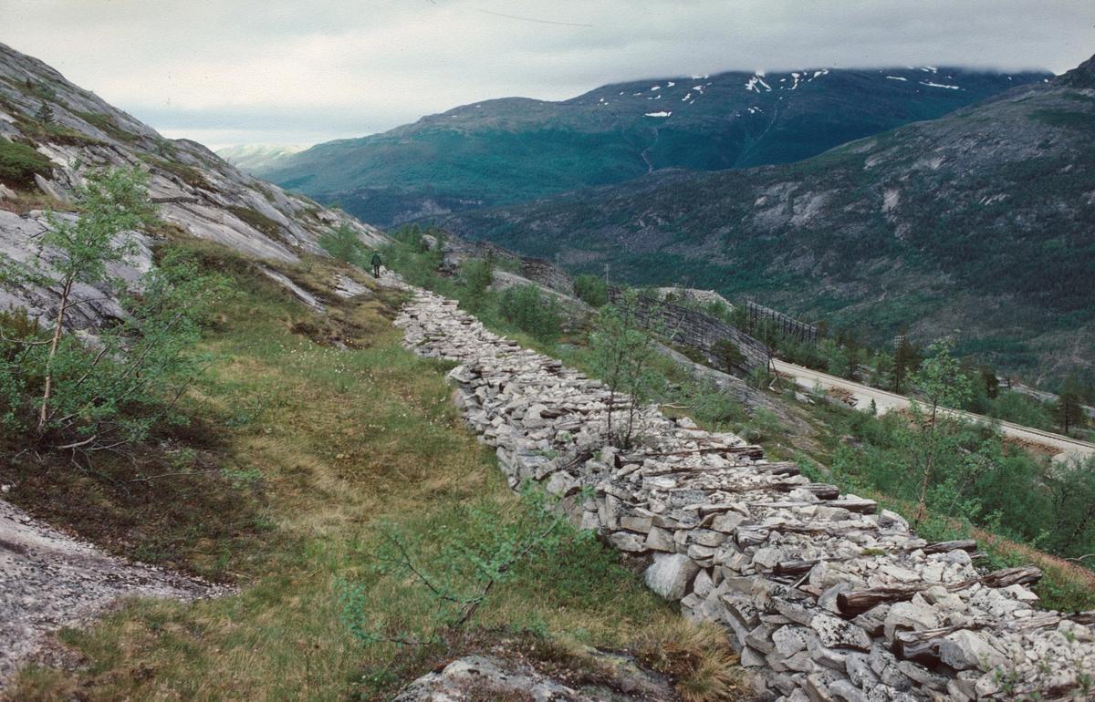 Rester av smalsporet anleggsbane fra Nordlandsbanens anlegg nord for Lønsdal stasjon.
