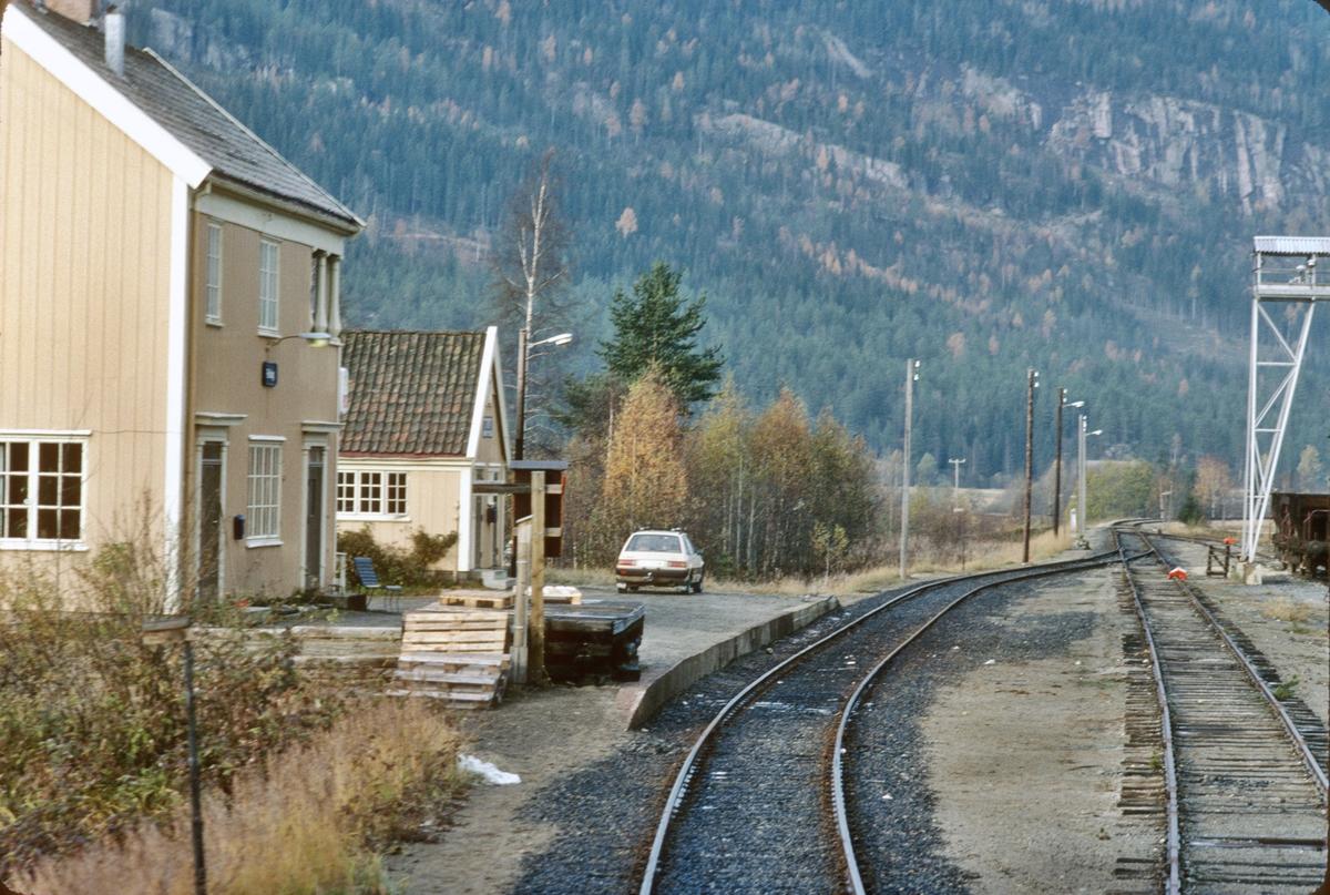 Innkjøring til Rollag stasjon. Numedal.
