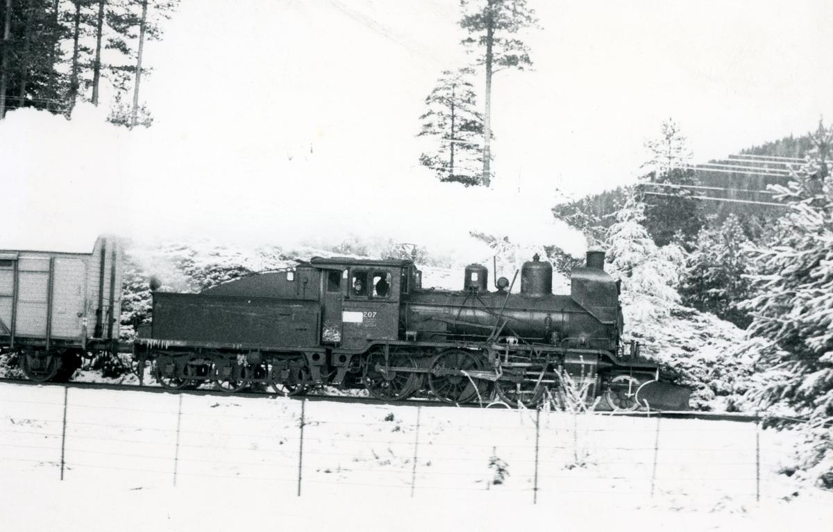 Godstog med damplok 21e nr. 207 på Numedalsbanen.