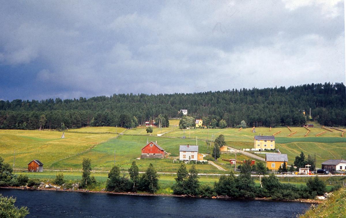 Koren, med Kvennåsen, Os i Østerdalen. Glomma i forgrunnen. Gården Vangskåsen midt i bildet. Villa Solvang og Øilund i bakgrunnen. Korbakken går opp mellom Langøien og Vangskåsen.