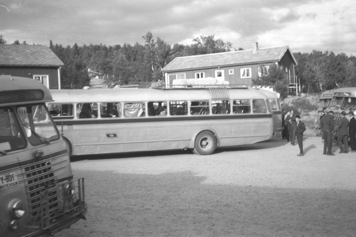 Nord-Norge busser, som kjørte mellom Fauske og Vadsø, har stoppet og folk er ute å strekker på beina. Stedet kan iflg. infomanten være Ifjord. Bussen nærmest har registreringsnummer Y-801. Vi ser en Volvo-logo i grillen. Y-801 ble brukt av FFR eller Finnmark Fylkesrederi og Ruteselskap på en 1953-modell og seinere på en 1965-modell. Dette er nok 1953-modellen. Dette er typiske 1950-talls busser. På Nord-Norge-Bussens avganger Lakselv-Kirkenes eller motsatt, var det spisepause ved Ifjord Gjestgiveri. Bildet viser kanskje parkeringsplassen ved gjestgiveriet.
