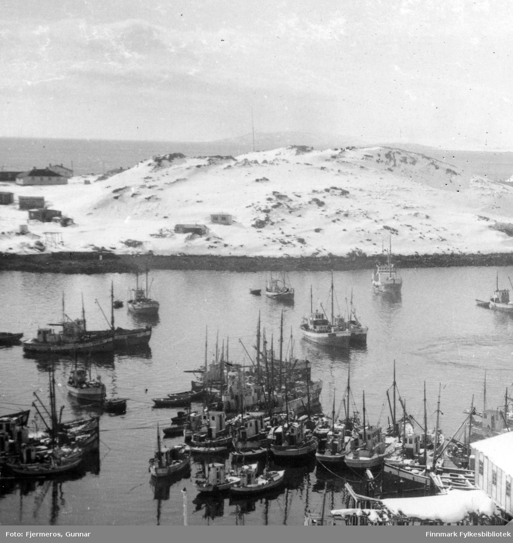 Mange båter ligger fortøyd i Honningsvåg havn en vinterdag i 1947.