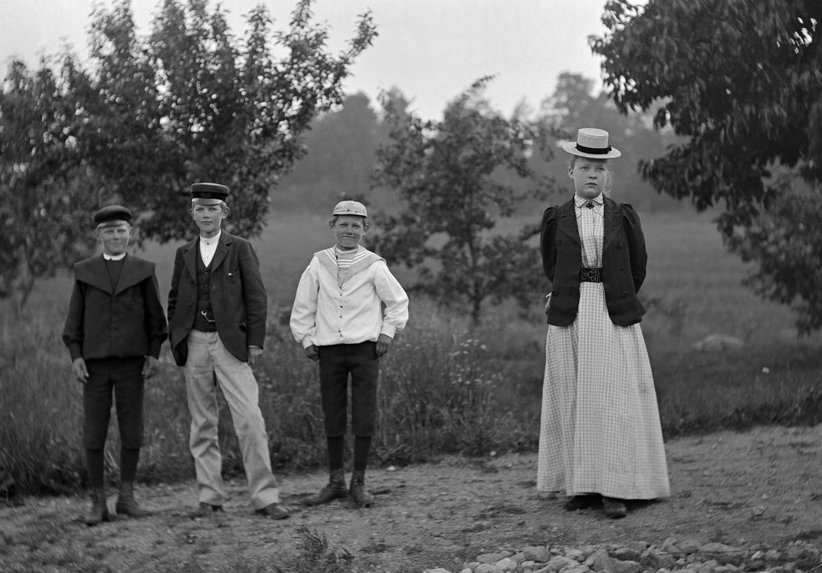 Bröderna Hallin i sällskap av en flicka poserar för porträtt vid äppelträden. Bilden är möjligtvis tagen vid deras morbrors hem Strömmen i Sankt Anna socken.  Anm: Identiteten av flickan har ej kunnat styrkas.