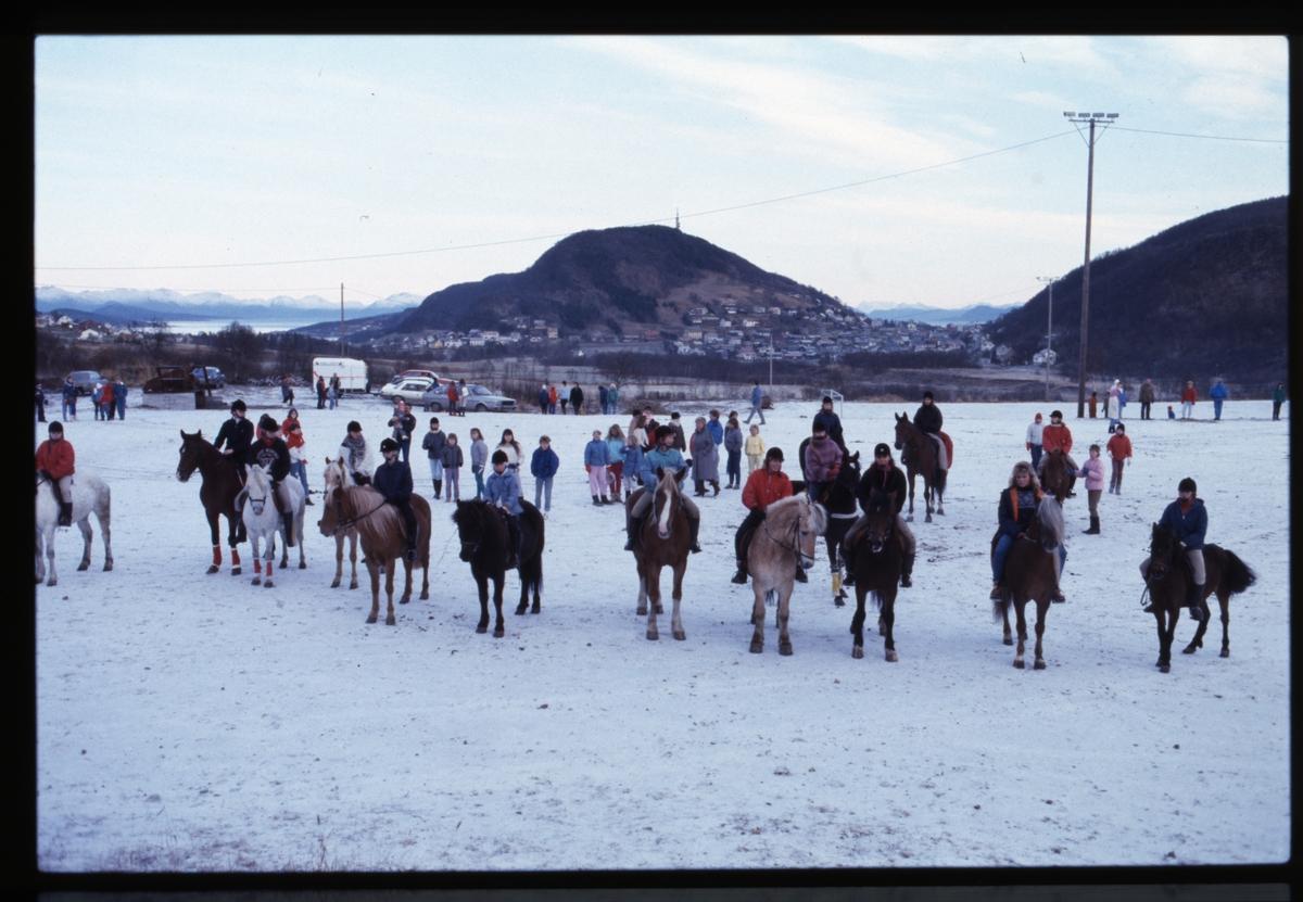 Hester og ryttere på ridestevne på Blåbærhaugen.