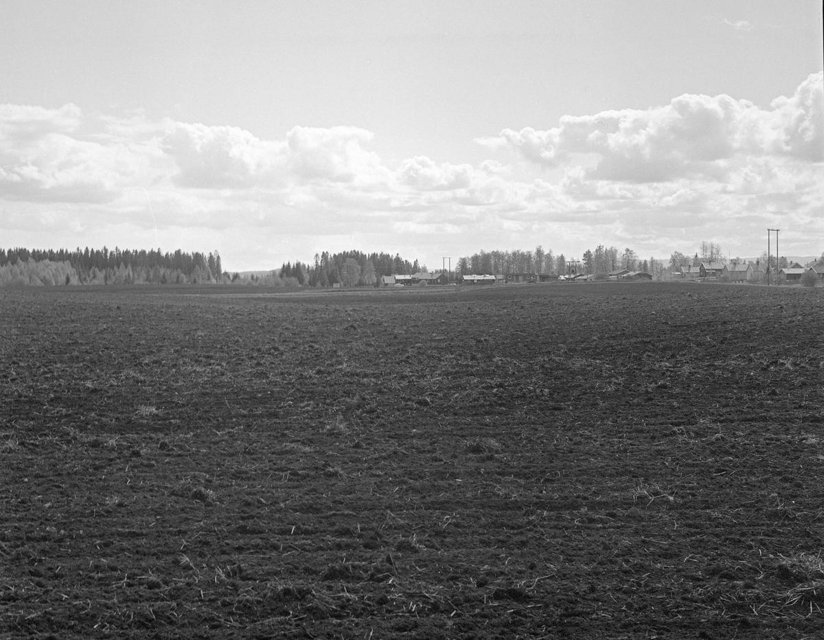Kulturlandskap ved Hov i Løten. Bildet er tatt fra gardsvegen ut over noe av åkerlandskapet som omgav tunet på eiendommen. I bakgrunnen skimter vi noe av villabebyggelsen i randsona mot den dyrkete marka. Fotografiet ble tatt i forbindelse med naturhistoriske oppfølgingsundersøkelser etter at det vinteren 1965 ble funnet et elggevir djupt nede i jorda her i forbindelse med nedgraving av en ny kloakkledning (jfr. SJF.01606 i museets gjenstandsdatabase). Radiologiske undersøkelser indikerte at geviret var om lag 8 000 år gammelt, og oppfølgingsundersøkelsene gav interessante innblikk i den naturhistoriske utviklinga i området rundt Hov fra istida og framover. Se fanen «Opplysninger» og litteraturreferansene til dette fotografiet.