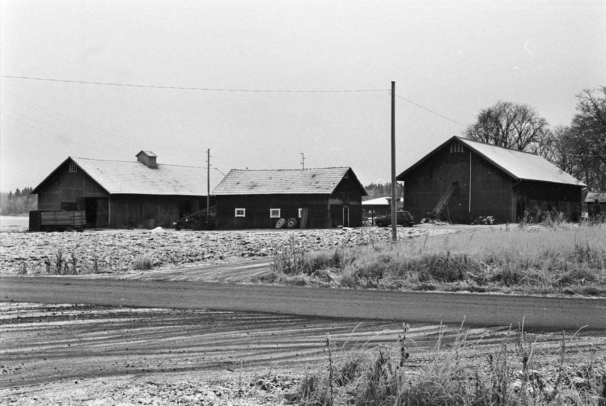 Ladugård, svinhus och lada, Näs-Focksta 7:1, Stora Focksta, Uppsala-Näs socken, Uppland 1984