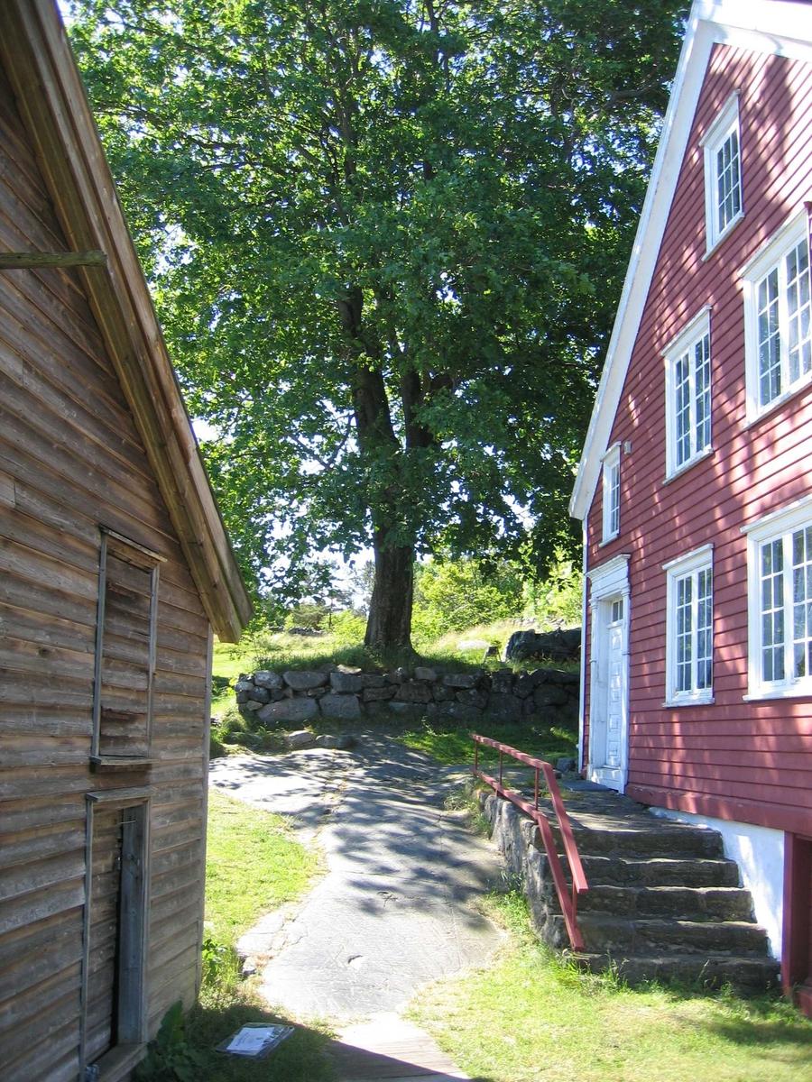 Merdøgaard. Eksteriør gavlvegger på skrå, våningshuset t.h. sjøboden t.v. I bakgrunnen stort lønnetre, og steinmur.