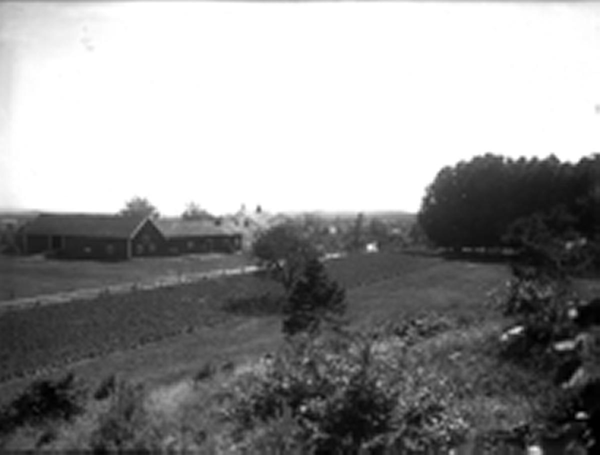 Hovedbygget og uthus på Dømmesmoen