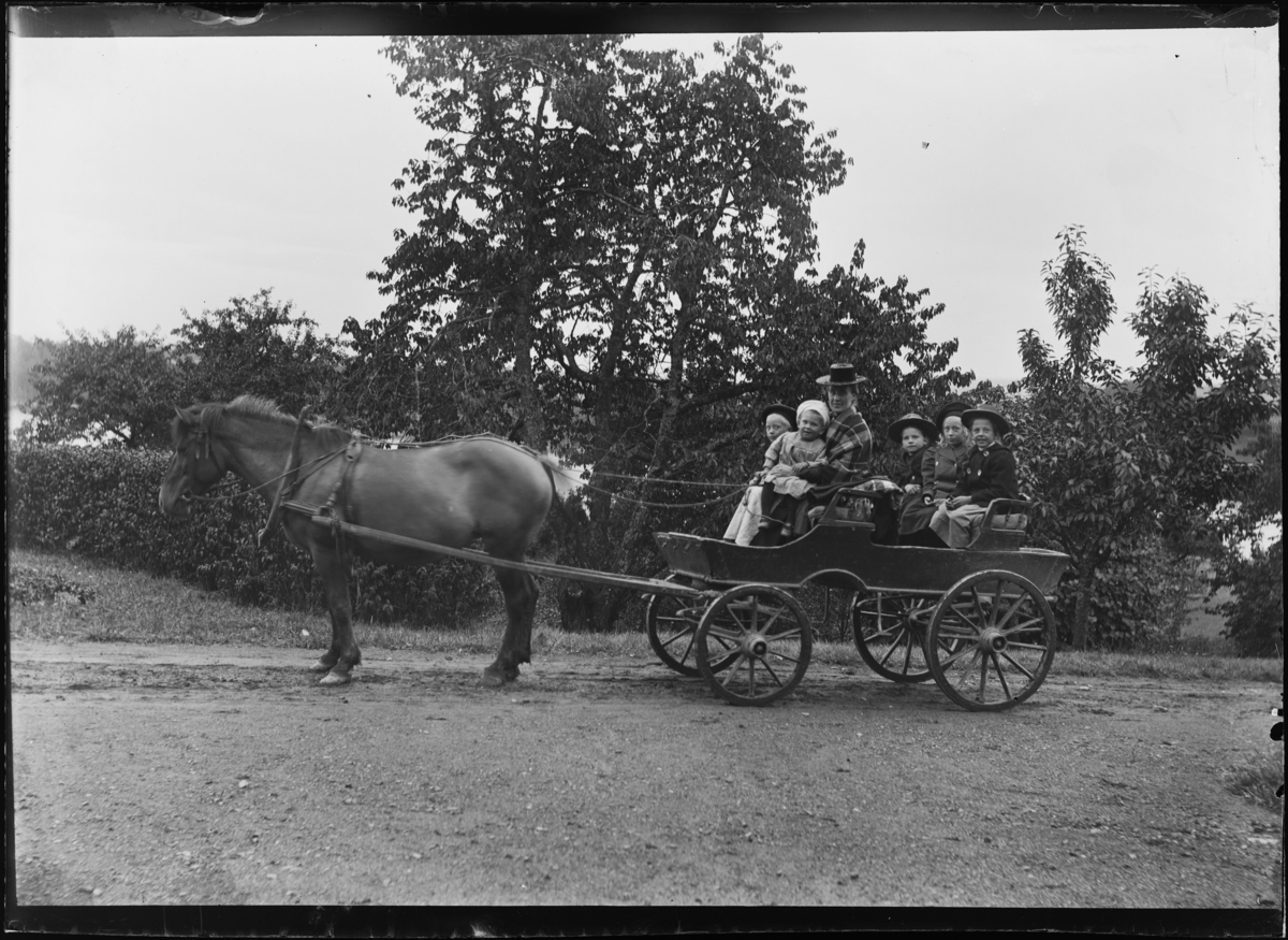 Dame med barn ute i hestekjerre.