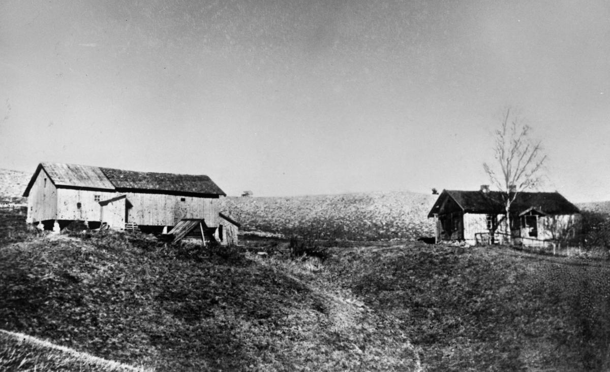 Husene på Neshagen bakken foran