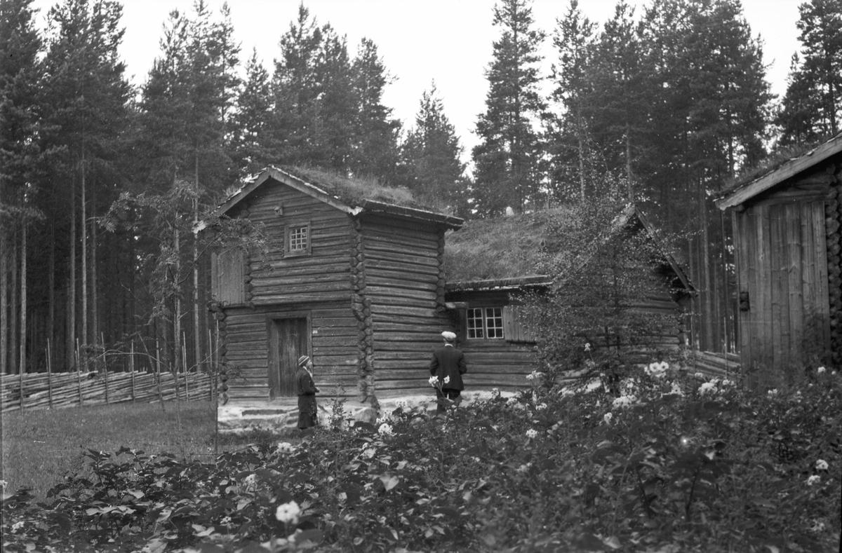 2 gamle tømmerhus.