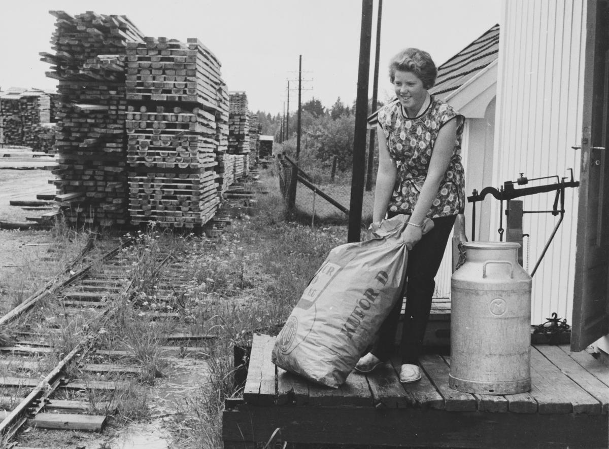 Tertittens nedlagte spor er tatt i bruk som lagerplass for trelast.