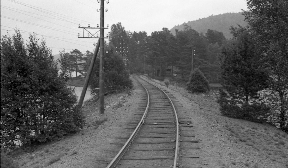 Setesdalsbanen syd for Hægeland stasjon