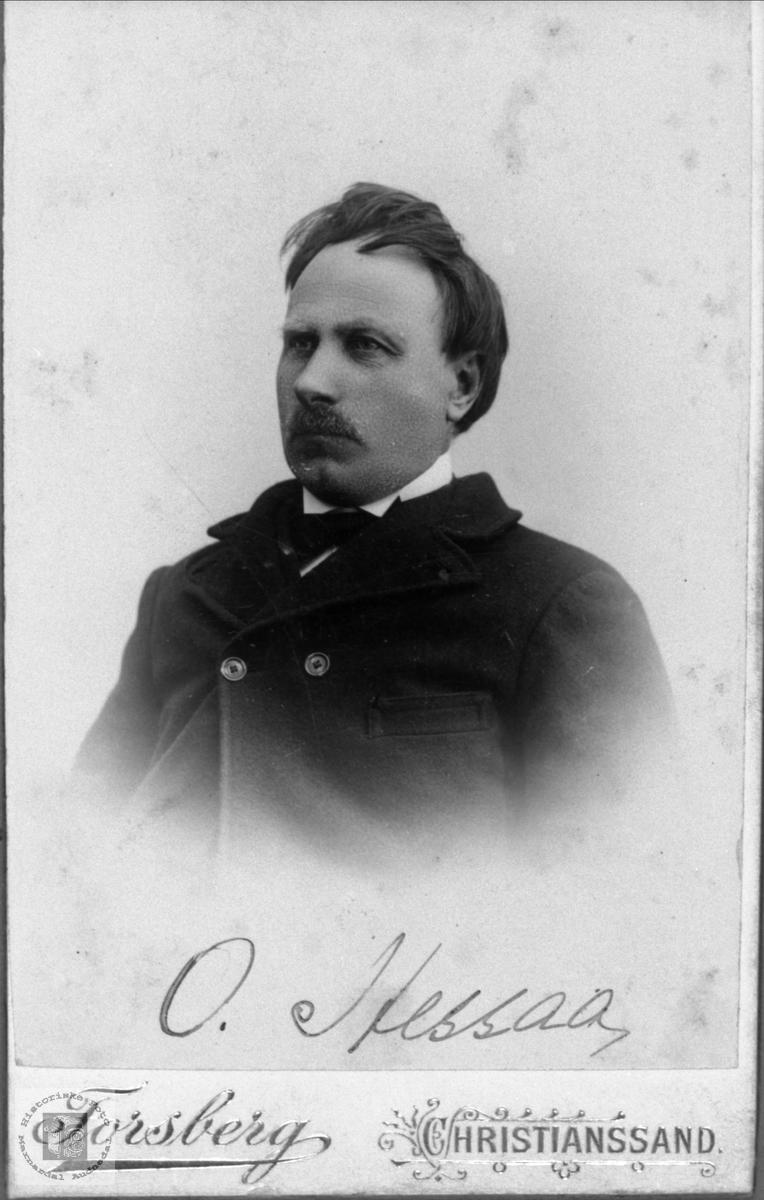 Portrett av Ole Torkildson Hesså, Bjelland