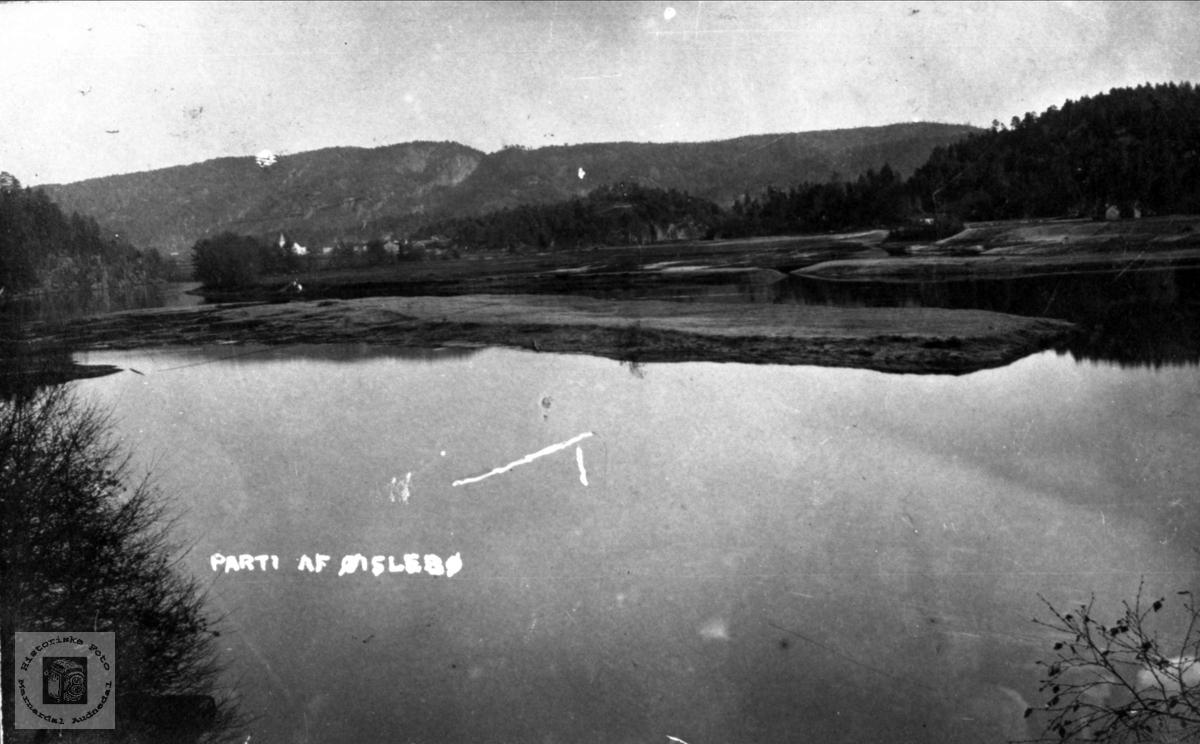 Skaue og holme i elva utenfor Skaue i Øyslebø.