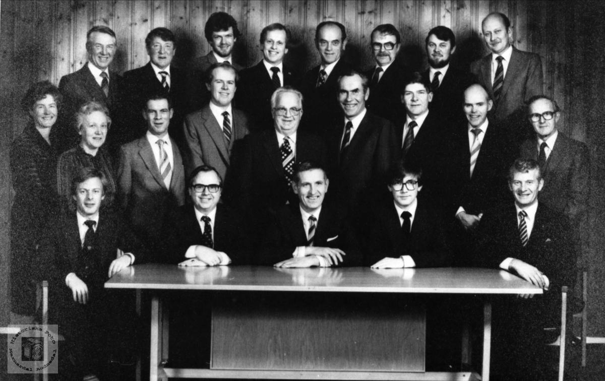 Marnardal kommunestyre 1979-1983.