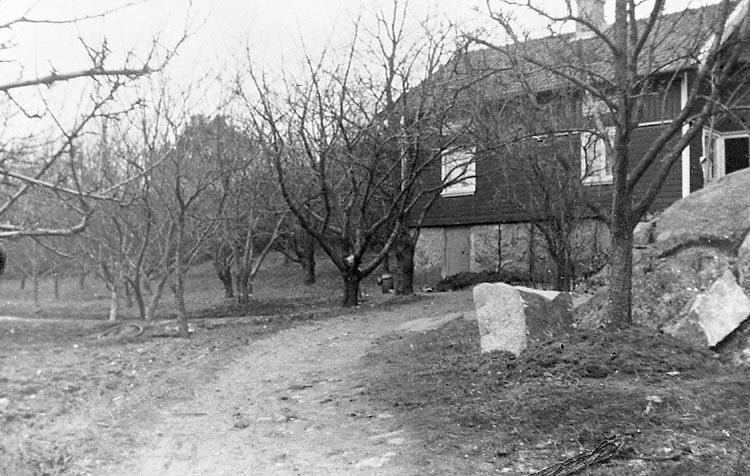 """Enligt fotografens journal nr 8 1951-1957: """"Mattsson, Fru Karin Stora Askerön Här""""."""
