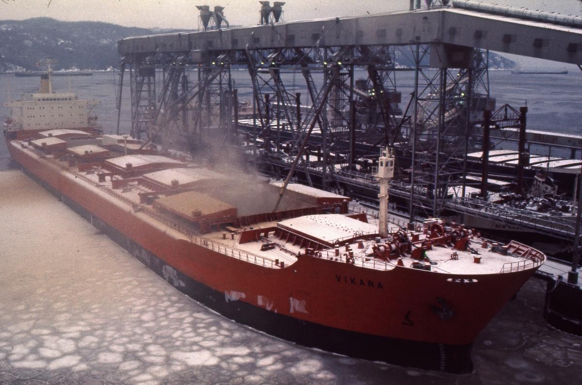 M/S 'Vikara' (b.1973, Mitsubishi Heavy Industries Ltd., Kobe, Japan), laster korn på Newfoundland.