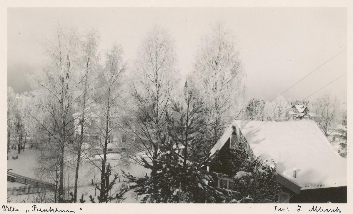 "Villa ""Punktum"" om vinteren."
