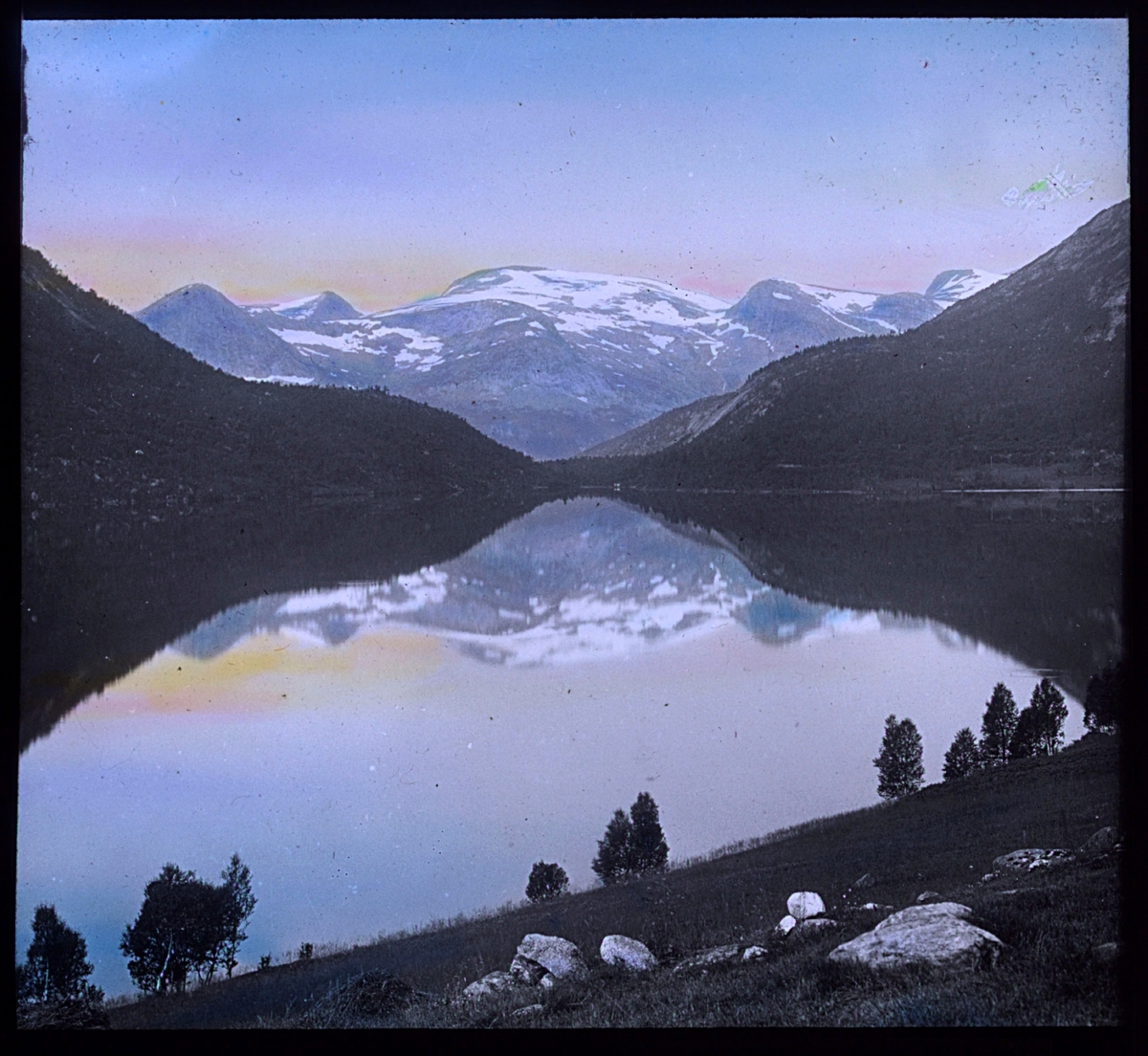 """""""N.842. Nordlandsnatur. N. 13. Håndkolorert av Alf Schrøder. Bildet viser et blankstille vann eller en fjord, med fjell med snø i bakgrunnen. Det er snøflekker i fjellet, men ved vannet står det bjørketrær med grønt løv. Bildet er kolorert med fargen fra sola på himmelen, muligens er det midnattsolen som er gjenskapt i pasteller med gult og rosa. Fjellet og landskapet speiler seg i vannet."""