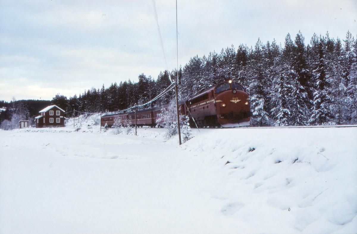 NSB dieselelektrisk lokomotiv Di 3 623 med persontog 281 kjører ut fra Trevatn stasjon.