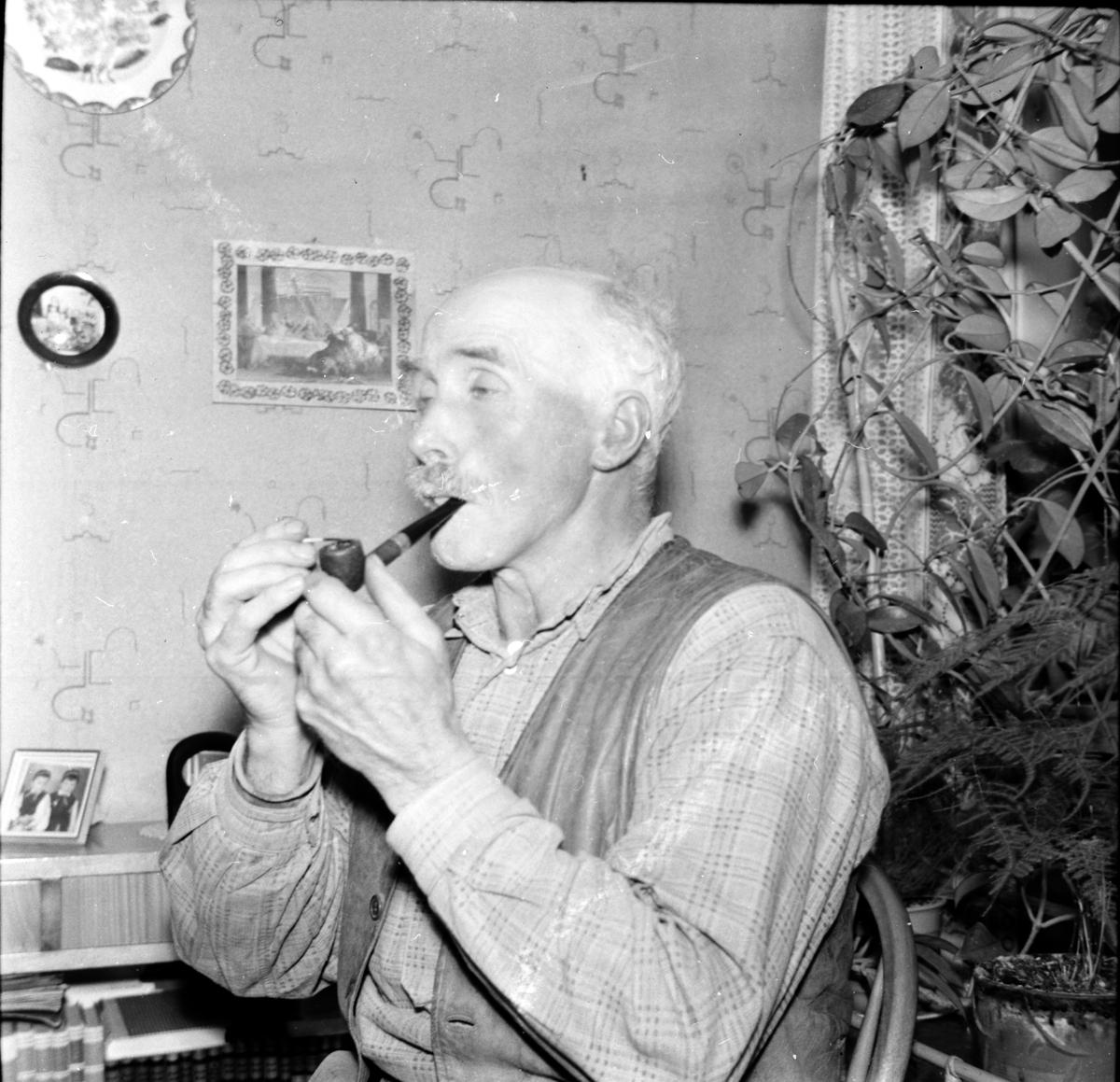 Berg Olle, Freluga, bokälskande flottare, 1954
