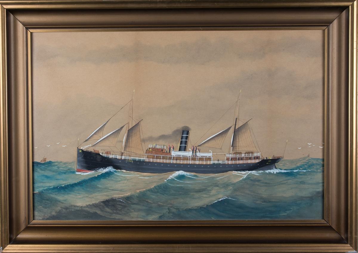 Skipsportrett av DS VENUS med full seilføring og damp på åpent hav. Skorsteinsmerket til BDS.