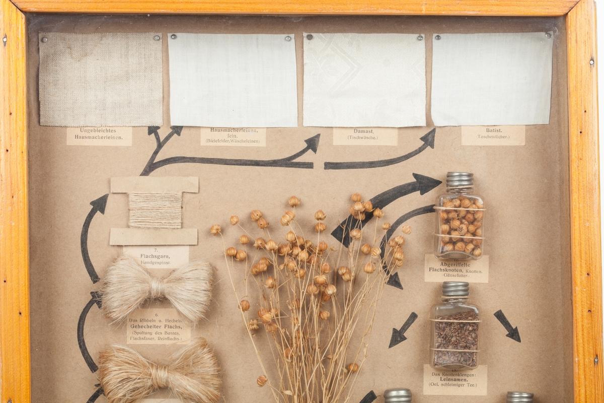 Trekasse med glassplate. innholdet viser de forskjellige produksjonsfaser og noen ferdige produkter av lin. Tysk telst.