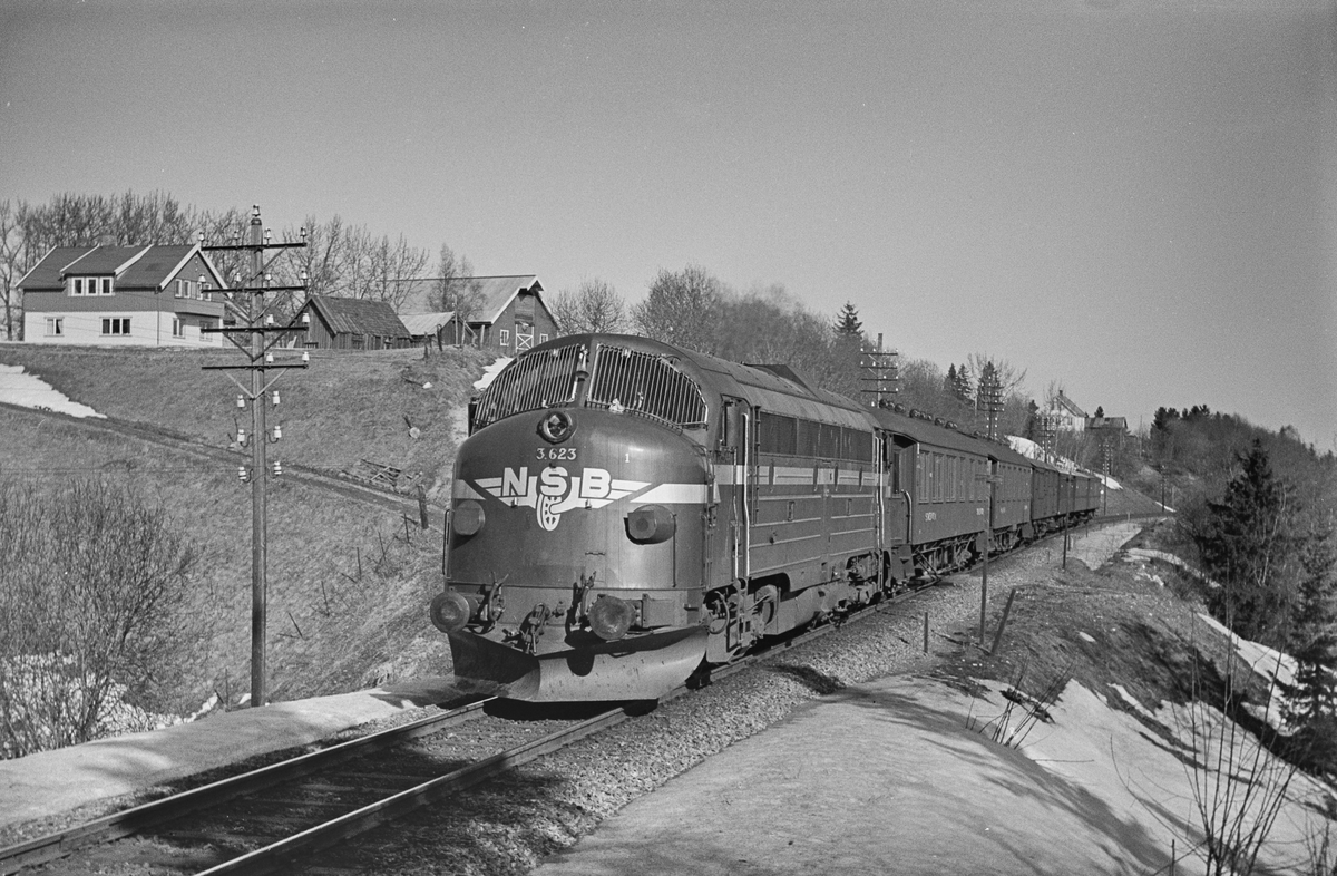 Ekstratog fra Trondheim til Oslo Ø over Dovre, nær Heimdal stasjon.