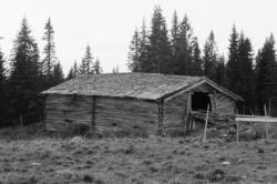 Døråsen, Gålås, Philske sameie, fjøslåve, seterbruk på Hedma